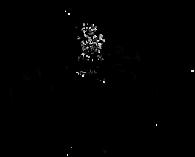 wri_logo-notxt